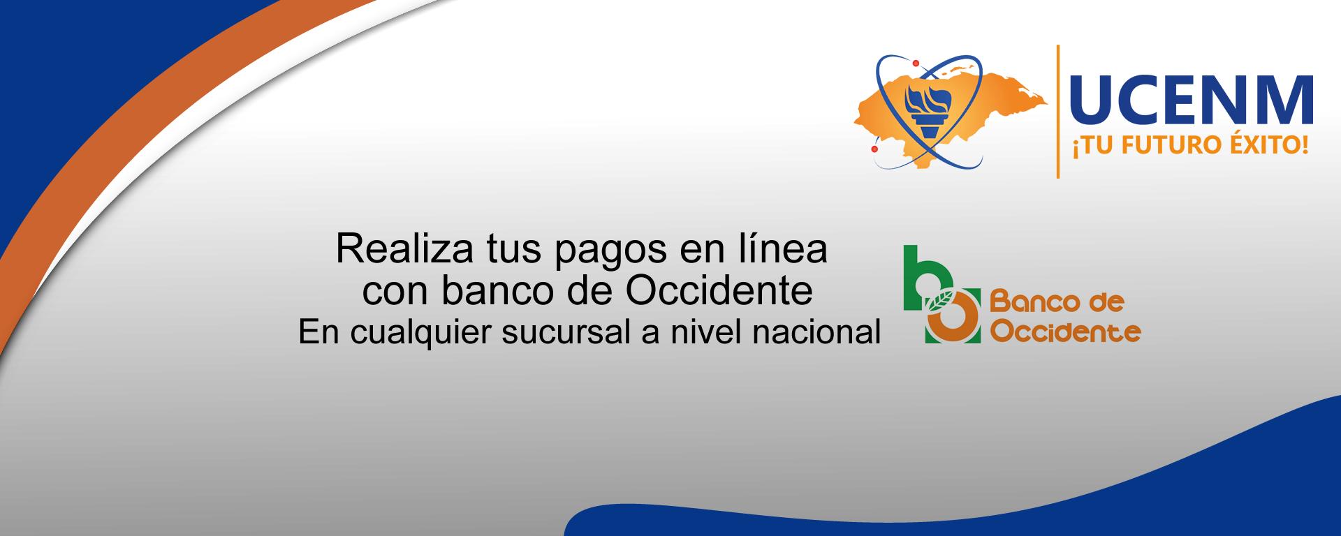 artes_pagos_en_linea_web_page