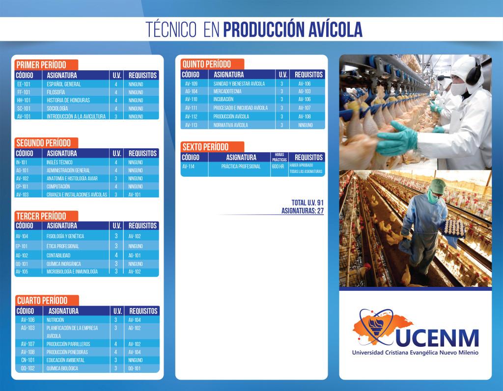 Técnico Producción Ávicola